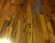 Engineered Tigerwood Hardwood